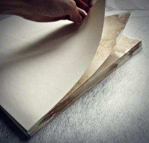 Cuerpo del libro recuperado con sus hojas de guarda